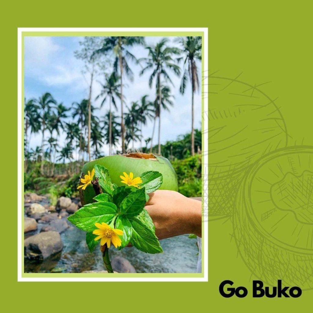 Go Buko Fresh Buko